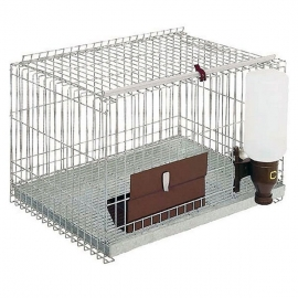 Cage for Ferrets
