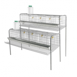 Cages Set for 32 Laying Hens