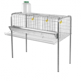 Cages Set for 12 Laying Hens