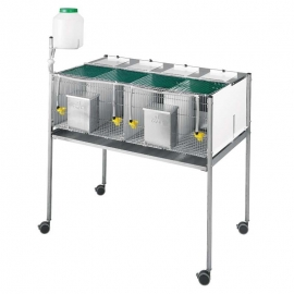 4 Compartments Cage