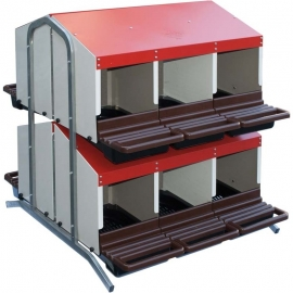 Battery of Twelve Nest for Laying Hens with Plastic Trays